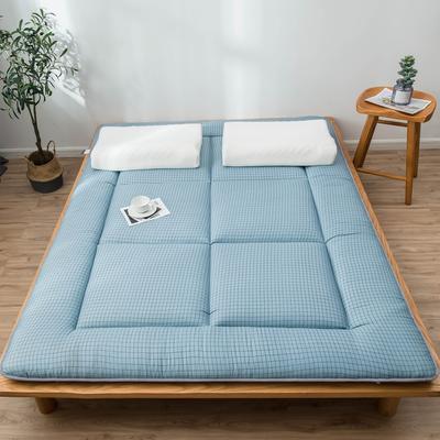 爆款推荐 北欧良品风格 简约家居 床垫床褥子学生单人双人 0.9*2.0学生 小蓝格
