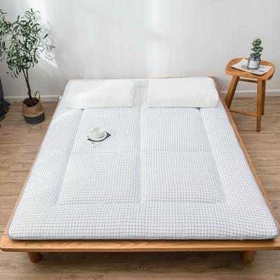 爆款推荐 北欧良品风格 简约家居 床垫床褥子学生单人双人 0.9*2.0学生 小白格