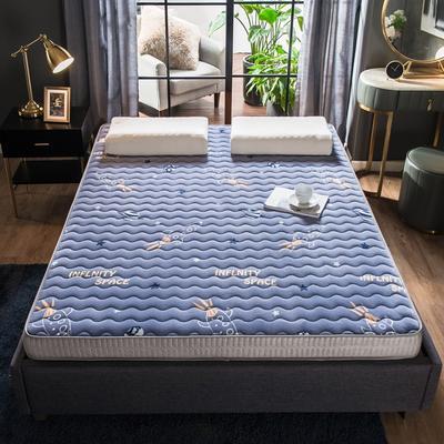 法萊絨立體印花床墊5D透氣底部加厚保暖1.5 1.8米雙人加大 0.9*2.0米 飛船(5cm)