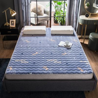 法萊絨立體印花床墊5D透氣底部加厚保暖1.5 1.8米雙人加大 0.9*2.0米 飛船(9cm)