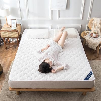 全棉抗菌夹棉防螨床护垫英威达纤维防滑席梦思保护垫1.51.8 0.9*2.0米 白色