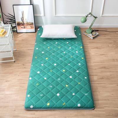 2020年春季新款床褥榻榻米地墊單人學生床墊宿舍90cm加厚 0.9*1.9米 風吟