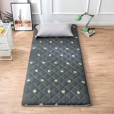 2020年春季新款床褥榻榻米地墊單人學生床墊宿舍90cm加厚 0.9*1.9米 楓葉