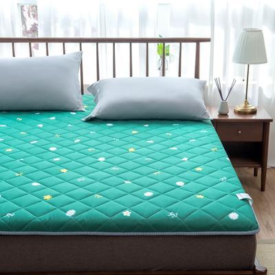 2020年春季新款床褥榻榻米地墊學生床墊雙人加大150cm1.8m 0.9*1.9米 風吟