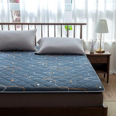 2020年春季新款床褥榻榻米地墊學生床墊雙人加大150cm1.8m 0.9*1.9米 紳士