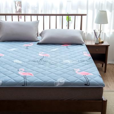 2020年春季新款床褥榻榻米地墊學生床墊雙人加大150cm1.8m 0.9*1.9米 火烈鳥灰