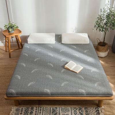 2020新款乳膠硬質棉床墊加厚單人雙人床褥 單邊款 90*200cm(厚度5cm) 羽毛灰色
