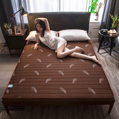 2020新款乳膠硬質棉床墊加厚單人雙人床褥 立體款 90*200cm(厚度5cm) 立體款-咖啡羽毛