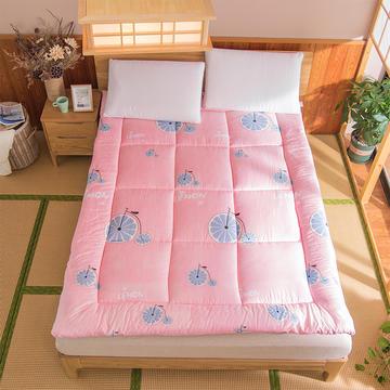 芦荟棉软垫被