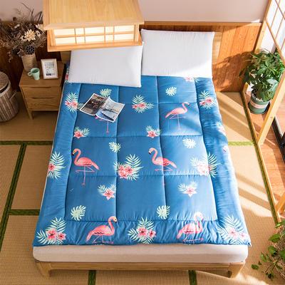 芦荟棉软垫被 90*200cm 鸟