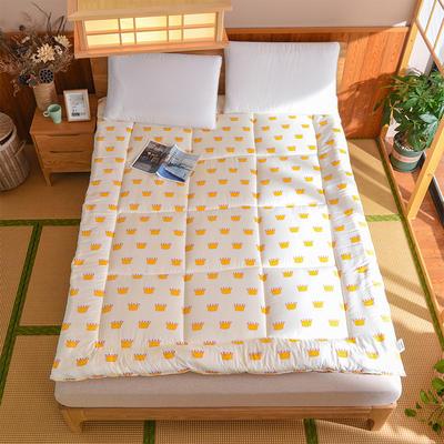 芦荟棉软垫被 90*200cm 小皇冠