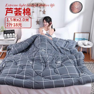 芦荟棉冬被 150x200cm  2斤 皇冠(模特图)