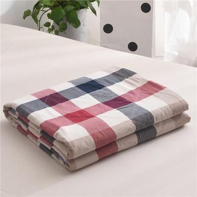 (总)全棉色织水洗棉夏被新疆棉花夏被空调被水洗棉夏被 枕套一只 蓝红彩格