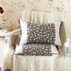 田园绗缝枕 荞麦枕 35*55cm绿野仙踪