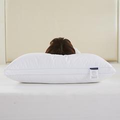 Rafigwer酒店外贸原单枕—双边款【5D螺旋纤维填充】 双边款—高枕