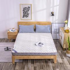 2018新款7公分厚立体针织棉软椰棕垫 0.9*2.0m 白色