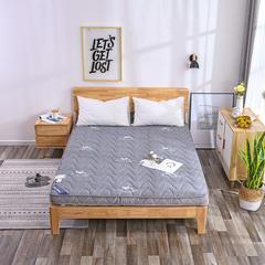 2018新款7公分厚立体针织棉软椰棕垫 0.9*2.0m 灰色