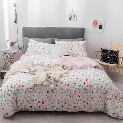 2019新款-全棉四件套 床单款四件套1.5m(5英尺)床 花舞春天