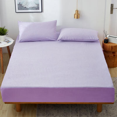 2019新款全棉毛巾布防水床笠 枕套48*74cm/对 紫色