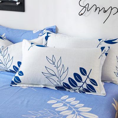 2019新款全棉12868单品枕套(2) 48cmX74cm/对 菲比兰