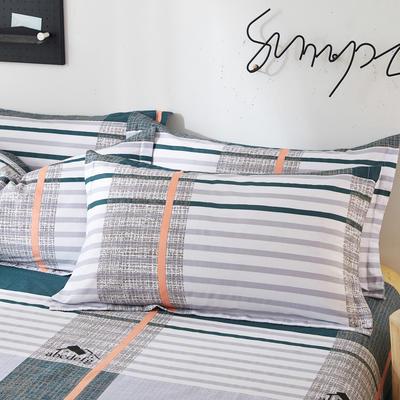 2019新款全棉12868单品枕套(2) 48cmX74cm/对 卡尔