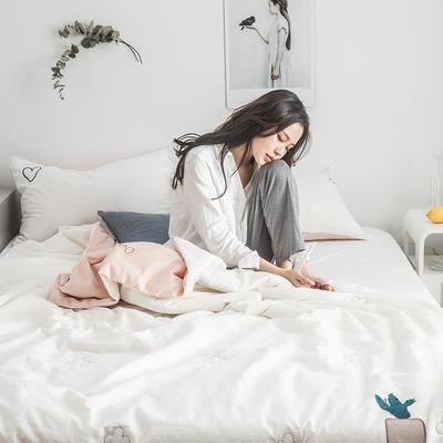 2019新款-色织水洗棉工艺款夏被 150x200cm 知否