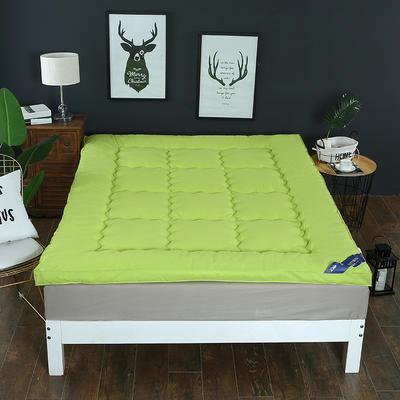 2018新款--纯色磨毛羽丝绒床垫 90x195cm 草绿