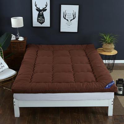 2018新款--纯色磨毛羽丝绒床垫 90x195cm 咖啡