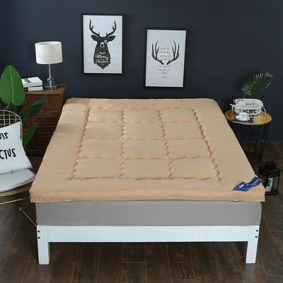 2018新款--纯色磨毛羽丝绒床垫 90x195cm 驼色