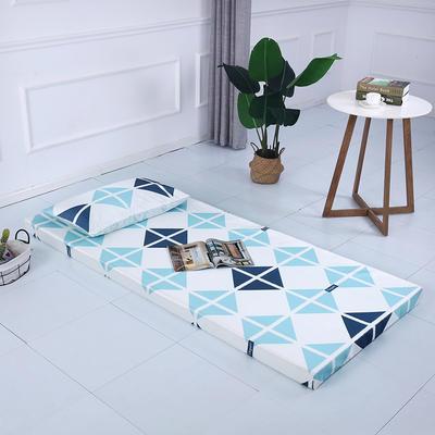 2019新款可拆洗冰丝床垫厚度8cm 枕套/只48*74cm 格艺