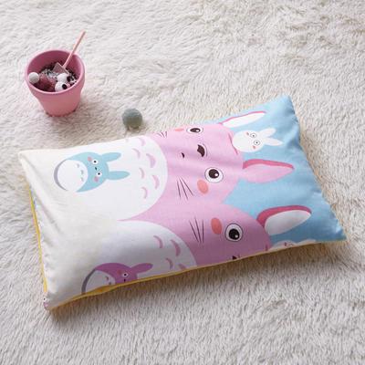 2018新款-(两用派)全棉+水晶绒幼儿园儿童单品枕套 48cmx74cm 龙猫