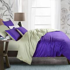 100支贡缎四件套 标准 深紫配豆绿