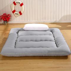 超厚素色床垫 0.9*2.0 贵妃红