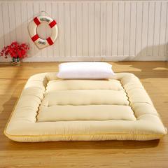 加厚素色床垫 0.9*2.0 优雅驼