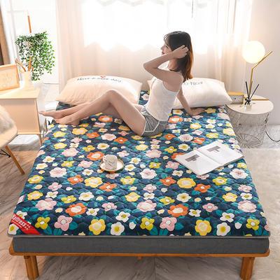 2020新款加厚牛奶绒保暖床垫 1.0*2.0m 加厚花弄影