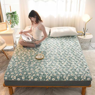 2020新款加厚牛奶绒保暖床垫 1.0*2.0m 加厚小清新