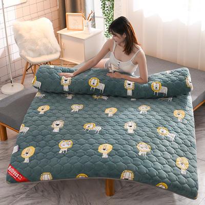 2020新款加厚牛奶绒保暖床垫 1.0*2.0m 加厚小狮子
