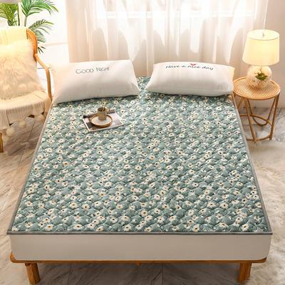 2020新款加厚牛奶绒保暖床垫 1.0*2.0m 软垫小清新