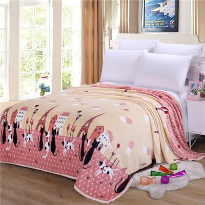 雪貂绒(每平方300克)毛毯毯子 120*200 阳光小镇