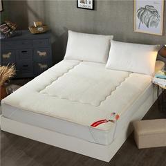 2017垫业床垫榻榻米 羊羔绒 90*200cm 0纯真-白色