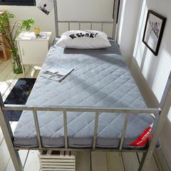 2019新款磨毛床垫终版-10cm 0.9*2.0m/1.9m 磨毛灰色