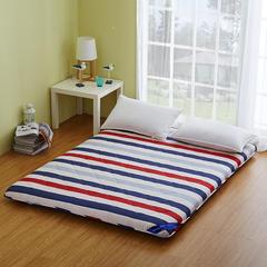 磨毛加厚床垫 0.9*2米 舞动青春