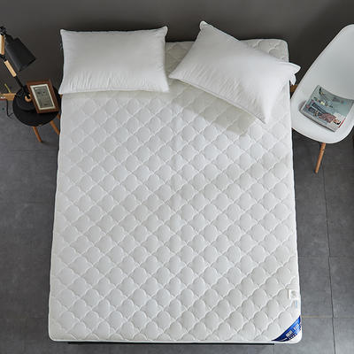 2019新款全棉美国英威达抗菌防螨床垫4色(4cm) 90*200 白色