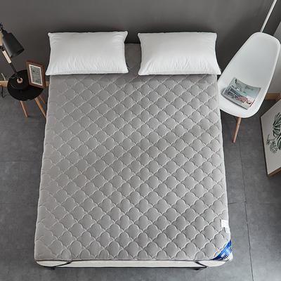 2019新款全棉美国英威达抗菌防螨床垫4色(4cm) 90*200 灰色