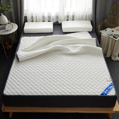 2019新款纯乳胶床护垫 0.9*2 针织棉-白色