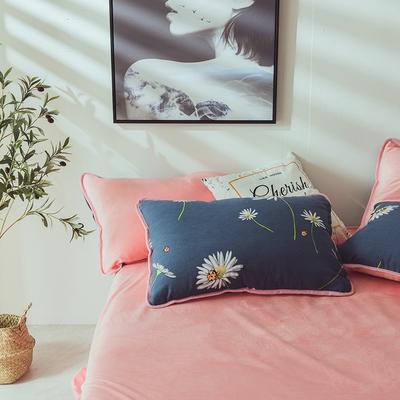 2019新款保暖魔暖绒(全棉磨毛+水晶绒)枕套一对 48*74*2 雏菊