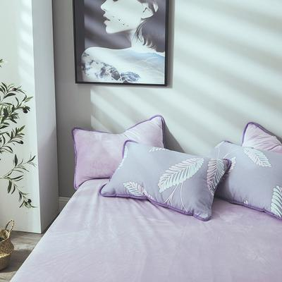 2019新款保暖魔暖绒(全棉磨毛+水晶绒)枕套一对 48*74*2 枝繁叶茂-紫