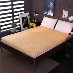 2018新款-针织棉加厚夹棉床垫 90*200*6cm 驼色