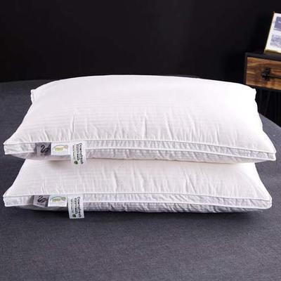 2018新款枕芯-100支缎条立体枕48*74cm 白