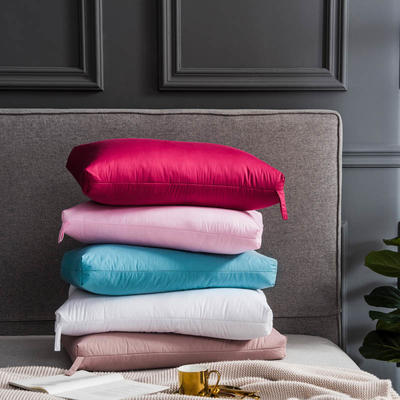 2018新款-出口欧美原单高端正品白鹅羽毛枕枕芯 高枕 冰蓝(48*74cm)